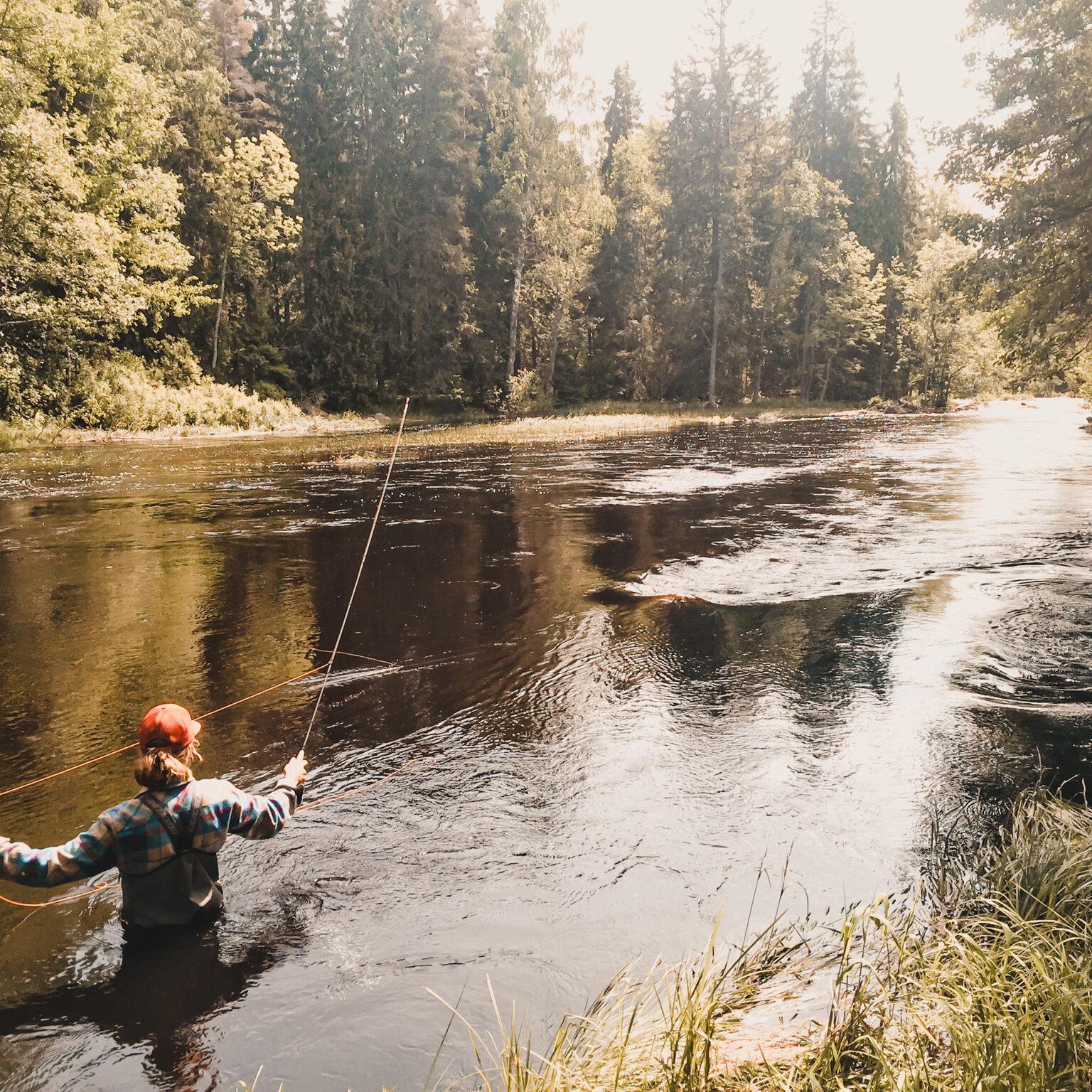 Fiska i sandviken hotellpri